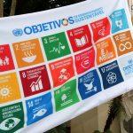 Desenvolvimento sustentável: ONGs apontam desafios para Brasil atingir metas