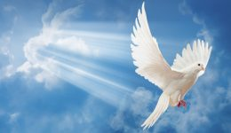 Por que desejar o batismo no Espírito Santo?